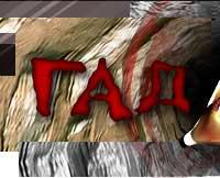 гадание колесо судьбы и оракул судеб, удобный сонник и гороскоп, публикации на тему гаданий и предсказаний
